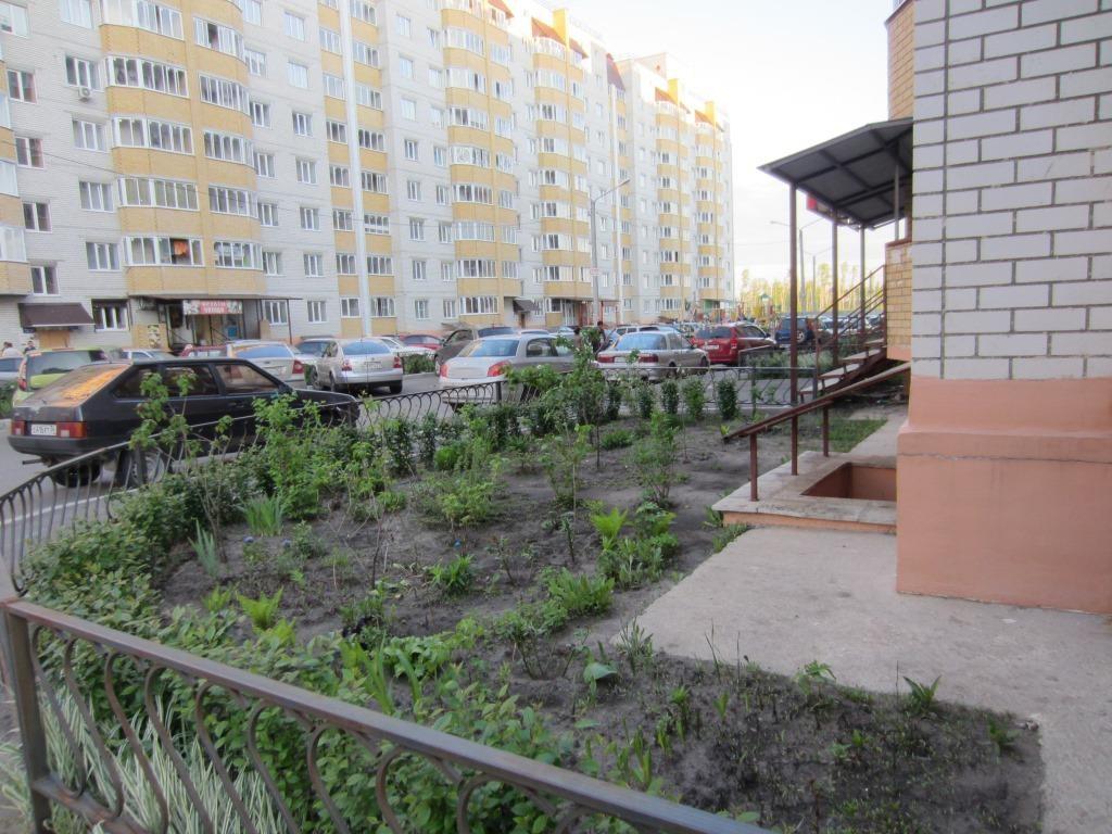 Borovoe11