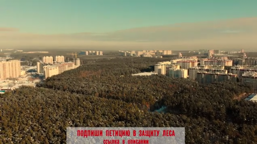 Северный лес Воронежа