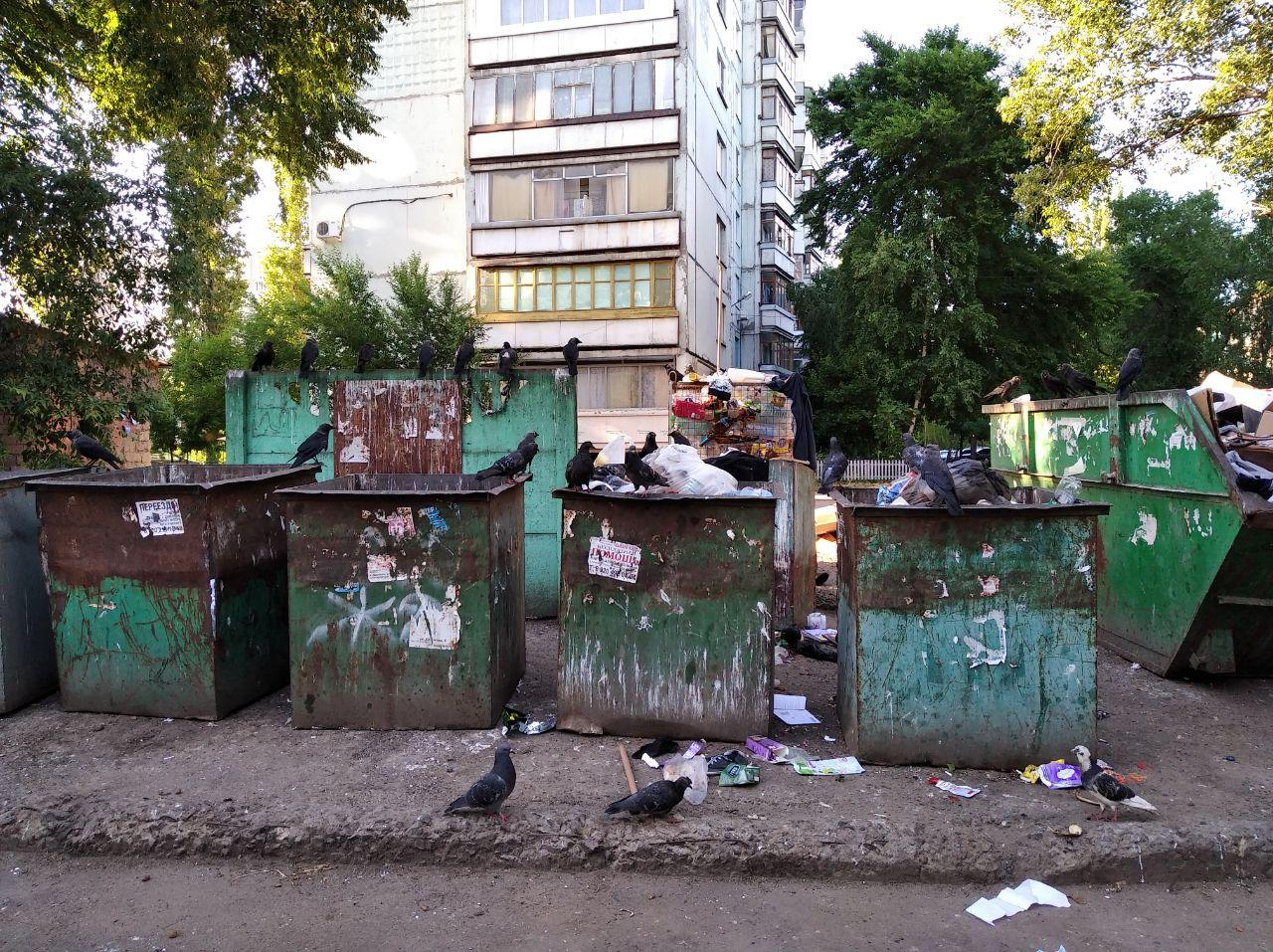 Остужева Воронеж фото мусорка3