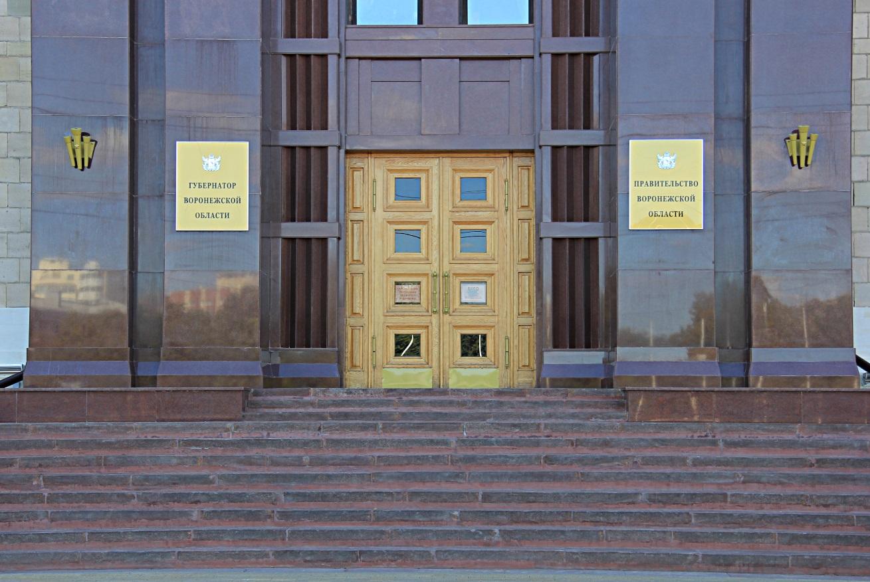 правительство Воронежской области 2