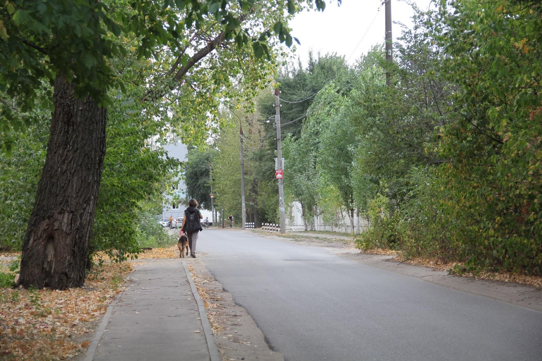 Парк у Мостазавода Воронеж5