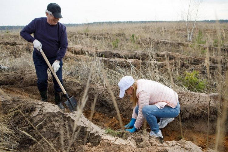 Воронежские единороссы приняли участие в международной акции «Сад памяти»